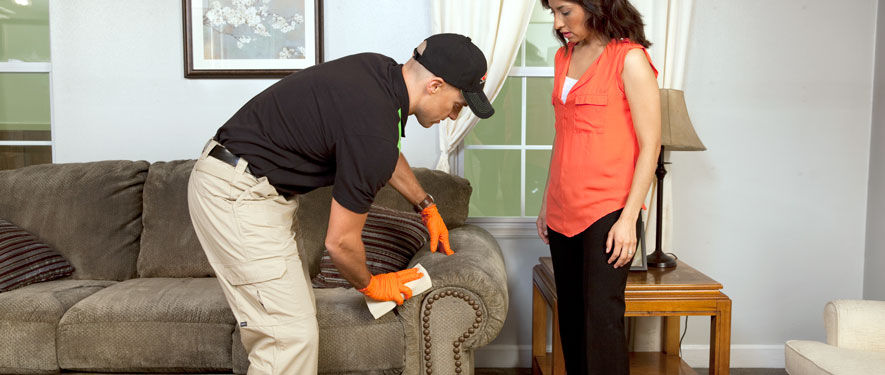 Concord, NC carpet upholstery cleaning