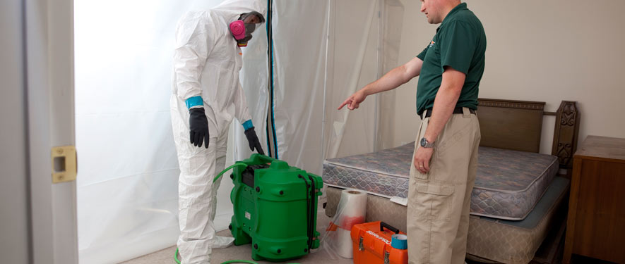 Concord, NC mold removal process